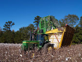 A cotton picker is dumping the load into a boll buggy. — Stock Photo