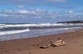 Broken lobster trap on a beach with waves rolling in on Prince Edward Island. — Stock Photo