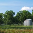 Two silos sitting beside a pecan grove in south Georgia. — Stock Photo #56387609