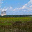 Nuclear power plant with steam coming from the chimneys as seen behind a Florida marsh or wetland beneath a cloudy blue sky. — Stockfoto #56387855