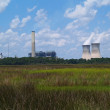 Nuclear power plant with steam coming from the chimneys as seen behind a Florida marsh or wetland beneath a cloudy blue sky. — Stockfoto #56445673