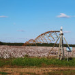 Center pivoting irrigation system over a ripe cotton field in south Georgia. — Stock Photo #56681235