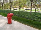 Red fire hydrant in a Chicago, Illinois, city park. — Stok fotoğraf