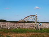 Center pivoting irrigation system over a ripe cotton field in south Georgia. — Stock Photo