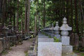 Cemetery into forest — Stock Photo