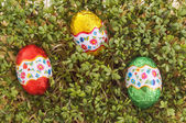 Easter egg ready to be found — Stock Photo
