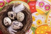 Quail egg in nest, spring and easter — Stock Photo
