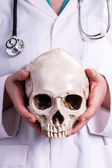 Doctor holding a skull in his hands — Stock Photo