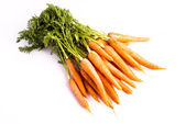 Bunch of Carrots with Leaves — Stock Photo