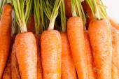 Bunch of Carrots , close up and macro — Stock Photo