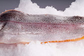 Fresh Trout side lying on ice — Stock Photo