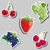 Ovoce a bobuloviny — Stock vektor