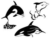 Killer whale. Silhouettes — Stock Vector