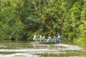 Cuyabeno Wildlife Reserve, Sucumbios Province, Ecuador, February — Stock Photo
