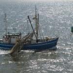 Dutch fishing boat — Stock Photo #71319027