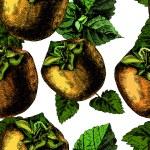 Pattern of ripe persimmon — Stock Vector #58091501