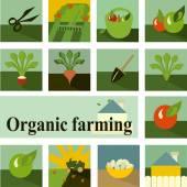 Set of icons. Organic farming — Stock Vector