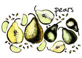 Set of drawing pears — Stock Vector