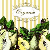 Beautiful illustrations with organic pears. — 图库矢量图片