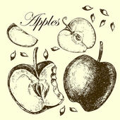 Set of drawing apples.  Illustrations. — Stock Vector
