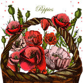 Illustrations with poppies in a wicker basket. — Foto de Stock