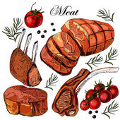 Hand drawing meat. — Stock Vector