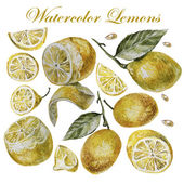 Watercolor lemon isolation on a white background. — Stock Vector