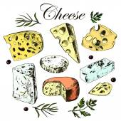 Hand drawing set with different cheeses — Vettoriale Stock