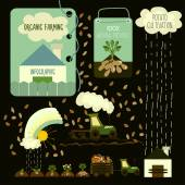 Potato cultivation, infographics. — Stockvektor