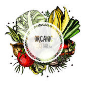 Label organic vegetables on a white background — Vector de stock