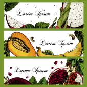 Cards with pictures of citrus. Pomegranate, Pitahaya, mango. Place for your text. — Stock Vector