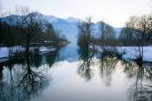 Winter trees with reflection in a lake, mountains in the backgro — Stock Photo