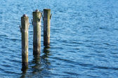 Mavi su ahşap direklerin — Stok fotoğraf
