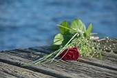 Last love greeting, rose bouquet on the old wooden pier after a  — Stock Photo