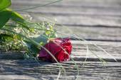 Thrown away love, rose bouquet forgotten on old wood — Stock Photo