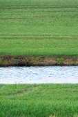 Stripe of a water canal in a green field, upright — Stock Photo