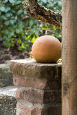 Ceramic ball as garden decoration — Stock Photo
