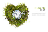 Pocket watch in a heart of grass isolated on white for health ca — Stock Photo