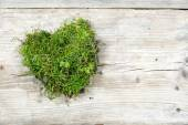 Heart shape from moss and grass on old wood, love background — Stock Photo