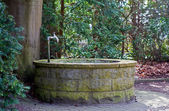 Round water well  with faucet in a cemetery with old trees — Stock Photo