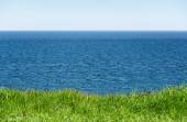 Green grass in front of the wide blue sea and horizon to the sky — Stock Photo
