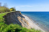 High coast cliff at the Baltic Sea in spring — Stock Photo