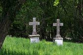 Two old  stone crosses as tombstones in an overgrown cemetery — Stock Photo