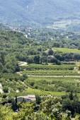 Aerial view,  landscape in South Europe, vertical — Stock Photo