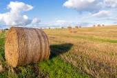 Round straw bales on a mown field under a blue sky with white cl — Stock Photo