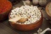 Bean Seeds Concept — Stock Photo