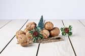 Walnuts with christmas xmas orient products — Foto de Stock