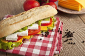Different kind of cheese sandwich and tomatoes with concept background — Stock Photo