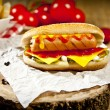 Hot Dog with fries and cheddar cheese concept background — Stock Photo #69360031