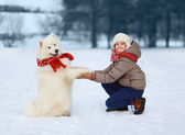 Happy teenager boy playing with white Samoyed dog — Stock Photo